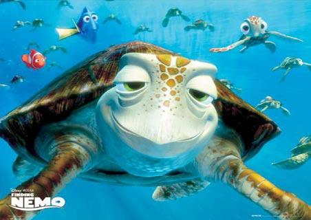Turtle-talking with Crush | Tentative Equinox